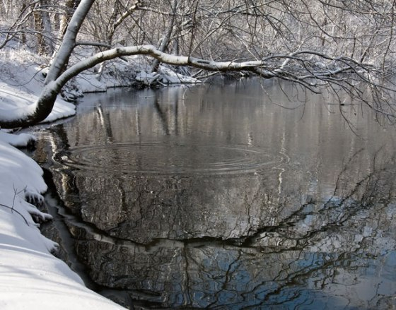dimpled_reflection_2_4904-copy