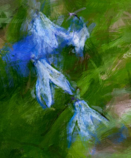 Spring_6943