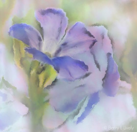 Spring_7683