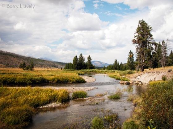 Yellowstone_1.1-(1)