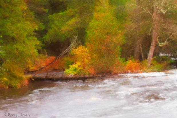 Along the Tahquamenon River, Michigan UP