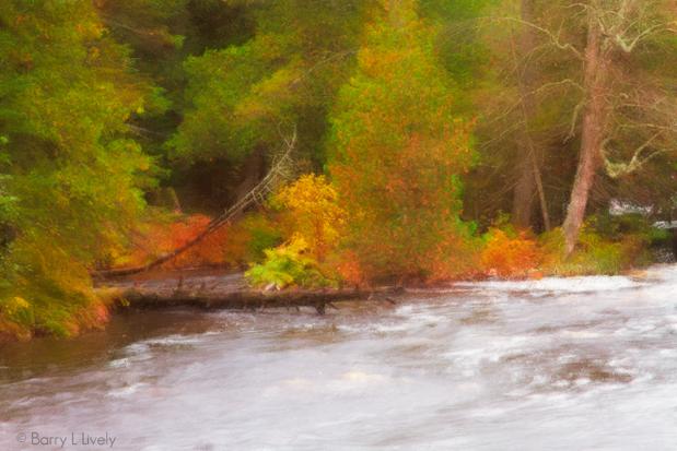 Along the Tahquamenon River, MichiganUP