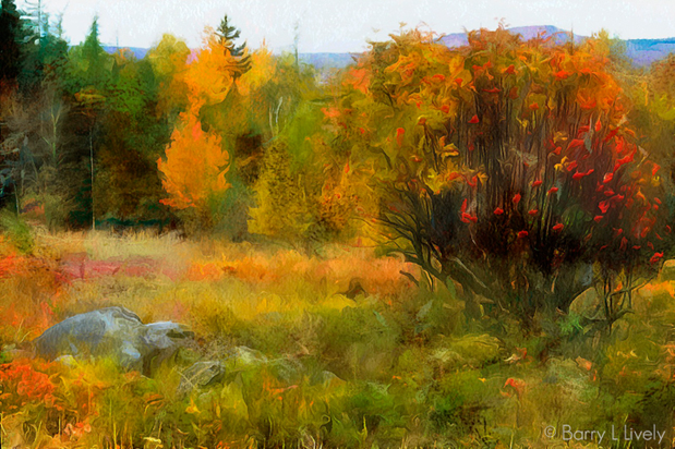 Autumn, New BrunswickCanada