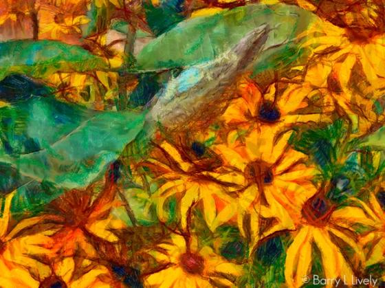 untitled-0932_DAP_Gogh2HD