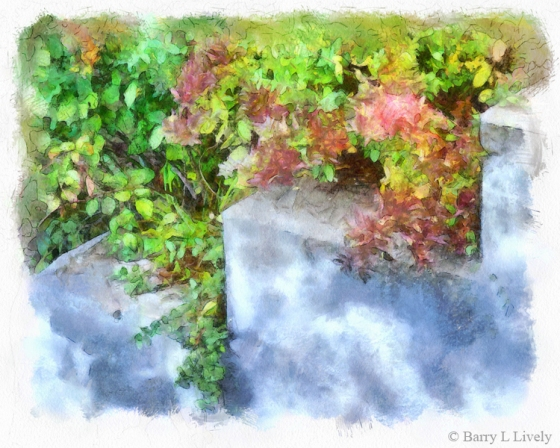 HH14-4630_DAP_Watercolor