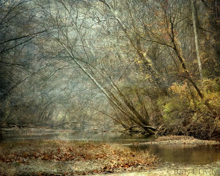Autumn on FallCreek