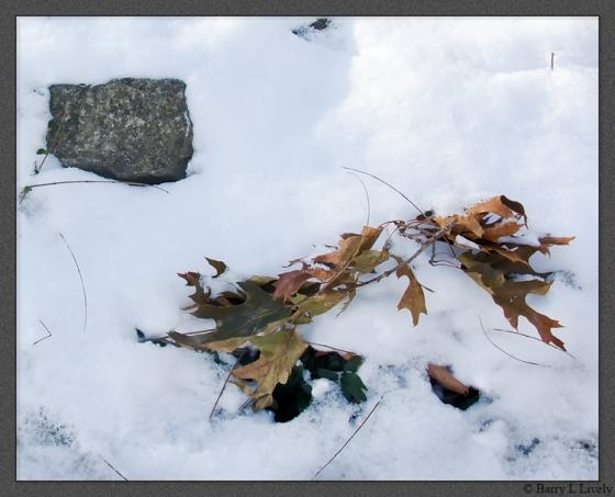 snow_on_wall_2466-Edit-cr