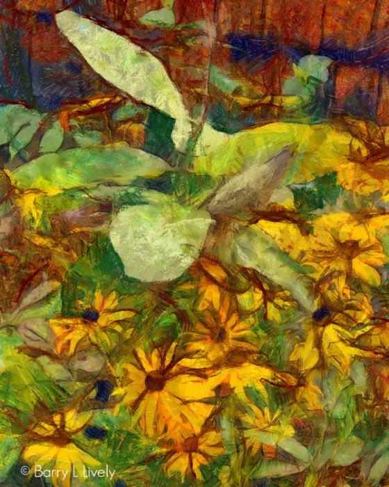 untitled-1056_DAP_Gogh2HD