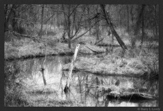 untitled-5659-Edit_bw
