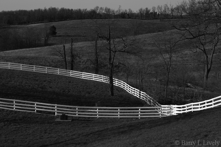 Fences in Kentucky