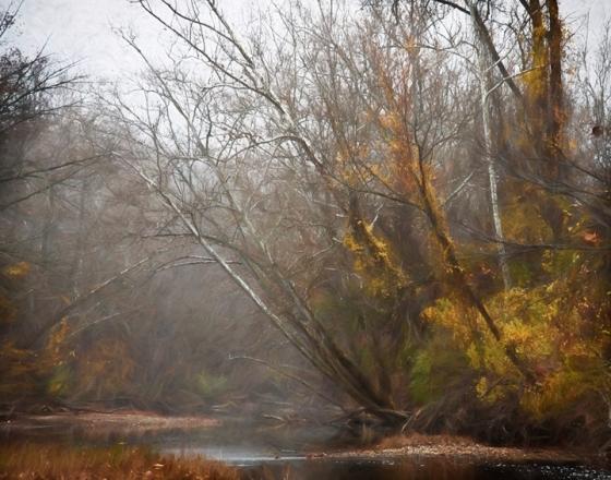 Fall_Creek_0751-OGBR