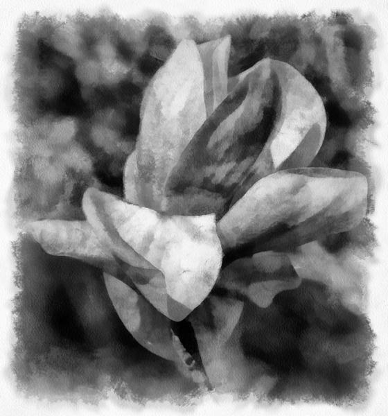 untitled-1722-Edit-2_DAP_Aquarell-005