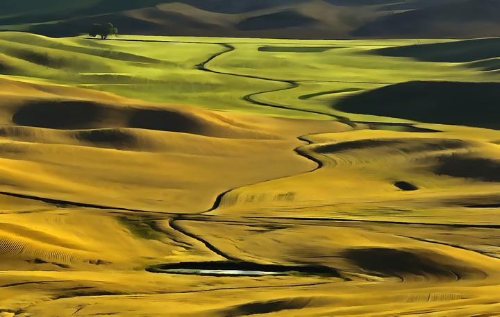 Stream, wheat fields,Palouse