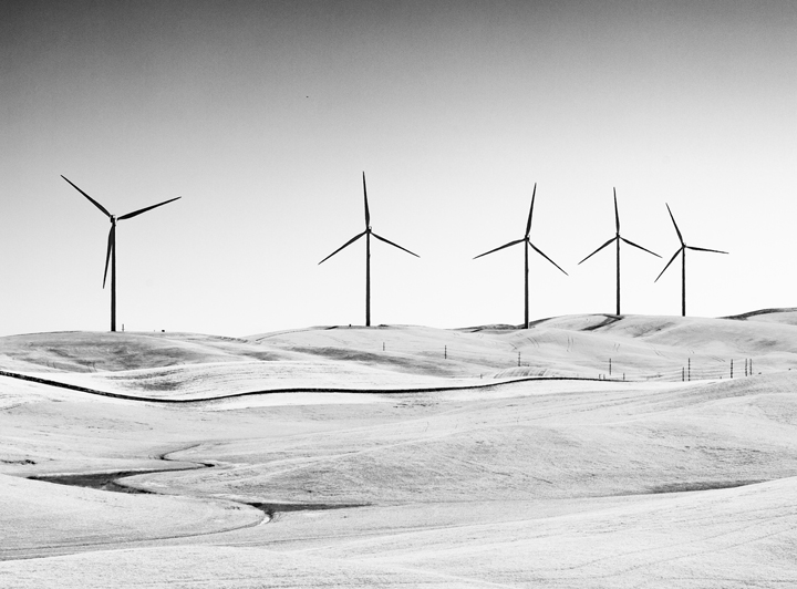 Wind turbines and wheat fields